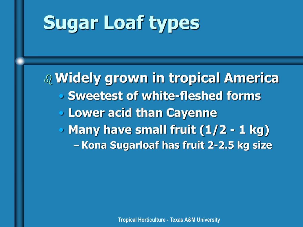 Sugar Loaf types