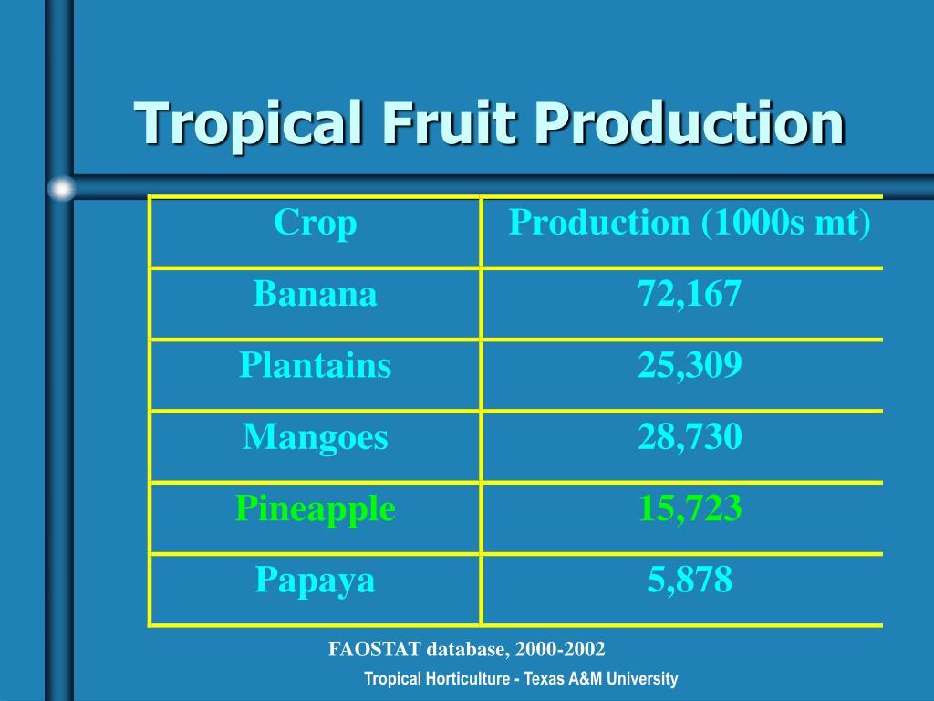 Tropical Fruit Production