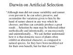 darwin on artificial selection