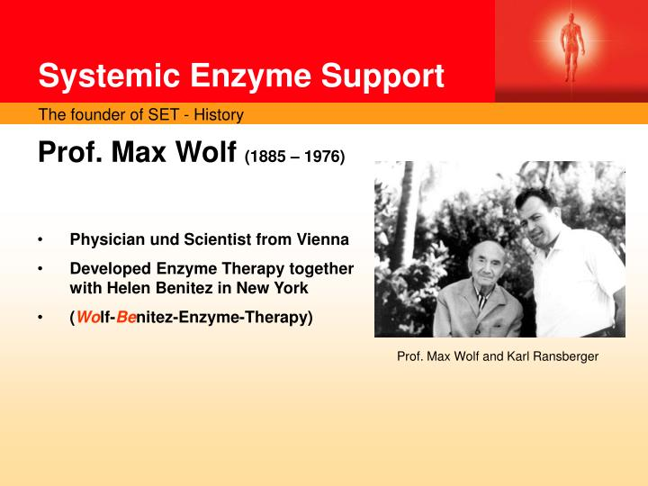 Systemic Enzyme Support