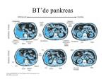 bt de pankreas