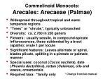 commelinoid monocots arecales arecaeae palmae