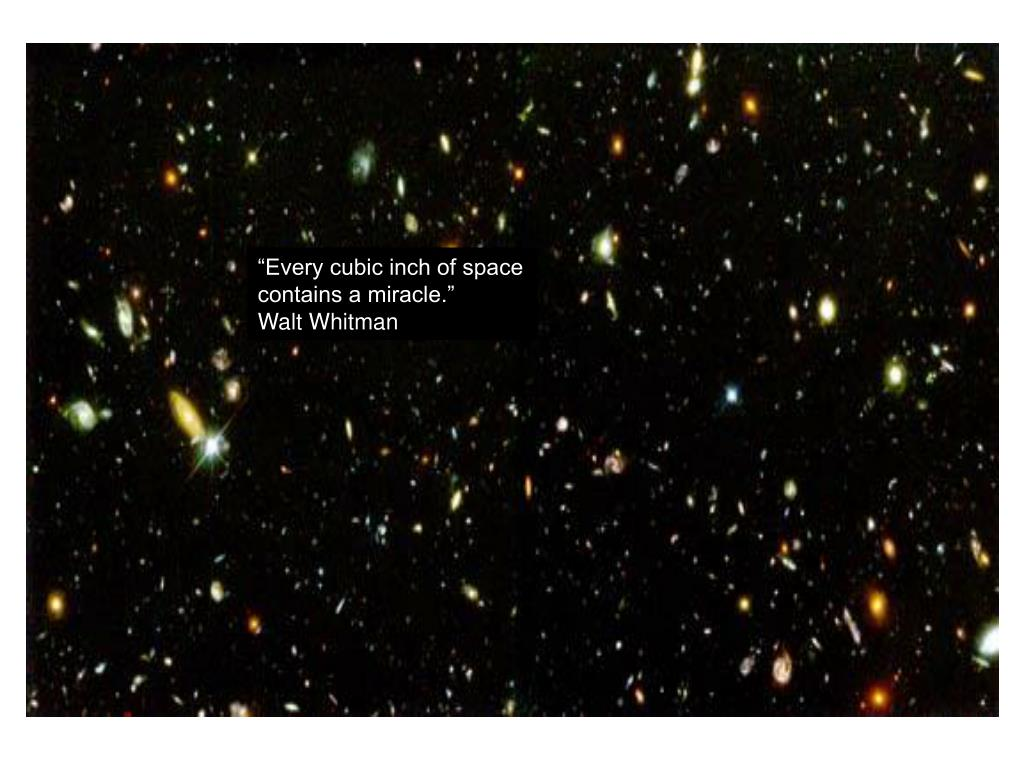 """""""Every cubic inch of space"""