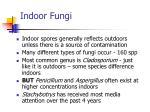 indoor fungi