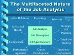 the multifaceted nature of the job analysis
