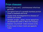 prion diseases