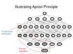 illustrating apriori principle