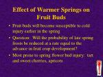 effect of warmer springs on fruit buds