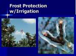 frost protection w irrigation