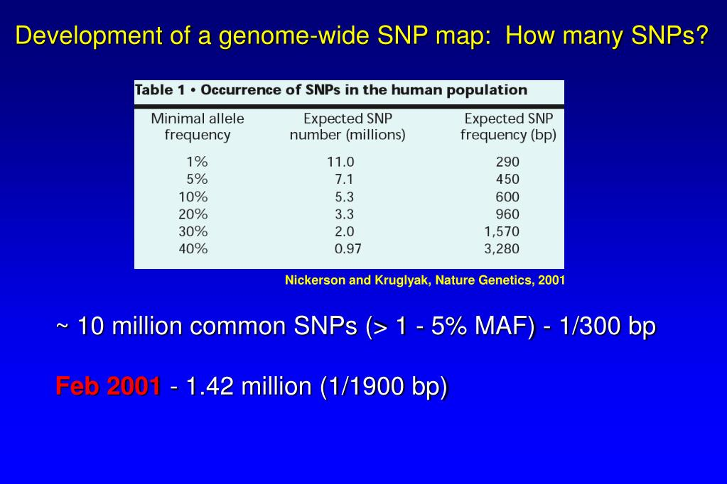 Development of a genome-wide SNP map:  How many SNPs?