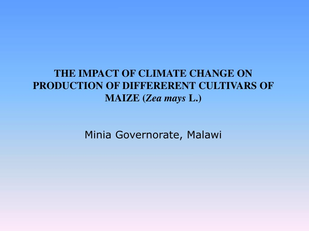 THE IMPACT OF CLIMATE CHANGE ON PRODUCTION OF DIFFERERENT CULTIVARS OF MAIZE (