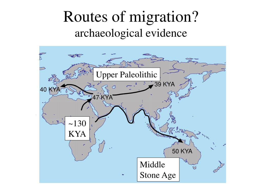 Routes of migration?