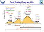 cost during program life