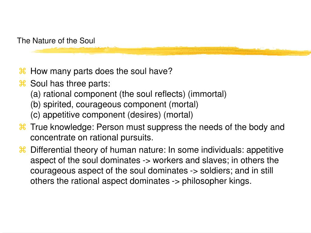 The Nature of the Soul