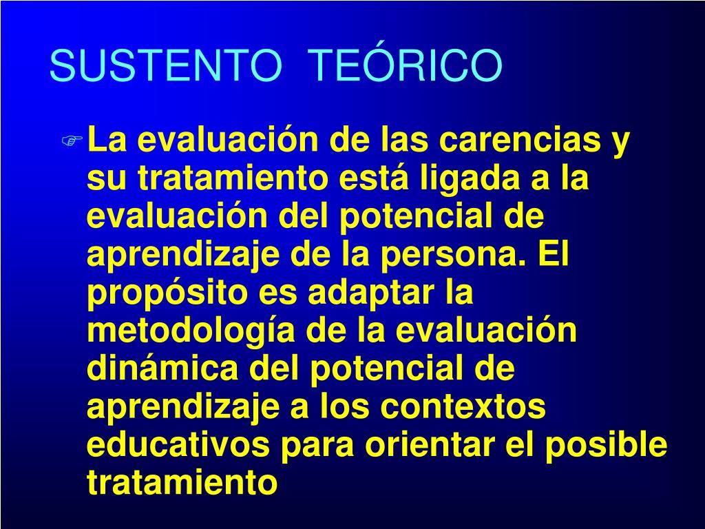 La evaluación de las carencias y su tratamiento está ligada a la evaluación del potencial de aprendizaje de la persona. El propósito es adaptar la metodología de la evaluación dinámica del potencial de aprendizaje a los contextos educativos para orientar el posible tratamiento