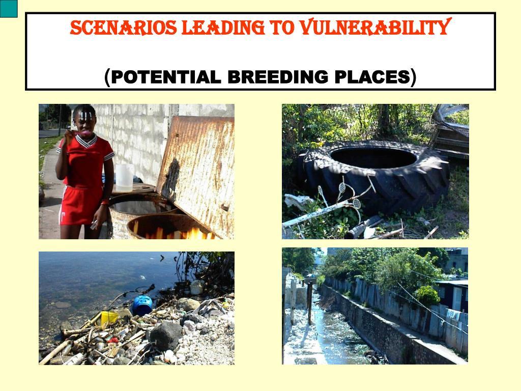 SCENARIOS LEADING TO VULNERABILITY