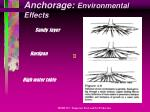 anchorage environmental effects