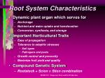 root system characteristics