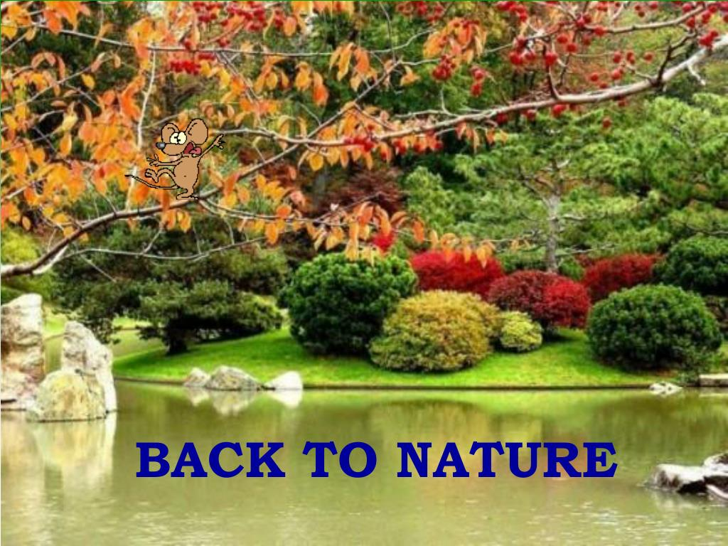 back to nature l.
