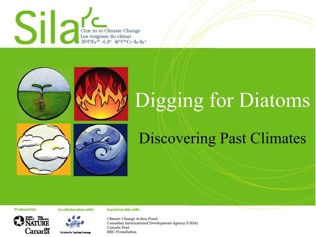 digging for diatoms l.