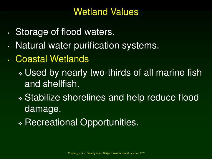 Wetland Values