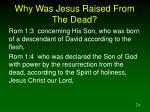why was jesus raised from the dead2