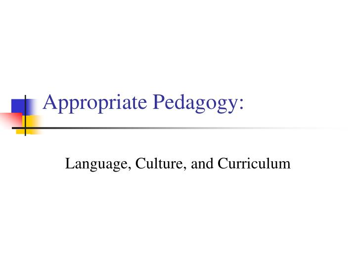 appropriate pedagogy n.