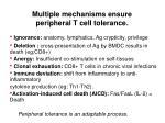 multiple mechanisms ensure peripheral t cell tolerance