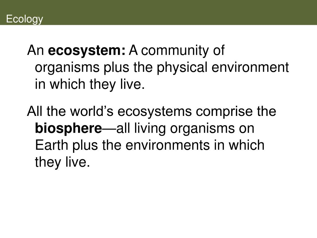 an ecosystem as a community essay This free science essay on process-based terrestrial ecosystem model is perfect for science students to use as an example.