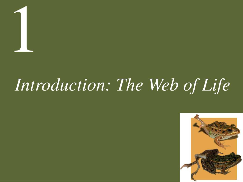 introduction the web of life l.