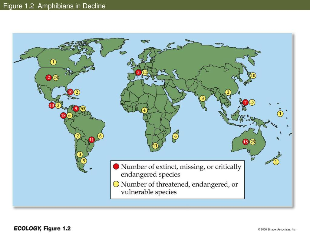 Figure 1.2  Amphibians in Decline
