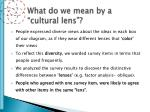 what do we mean by a cultural lens