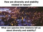 how are diversity and stability related in nature