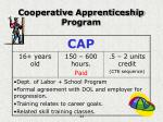 cooperative apprenticeship program