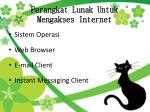 perangkat lunak untuk m engakses internet