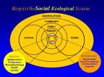 bio psycho social ecological system