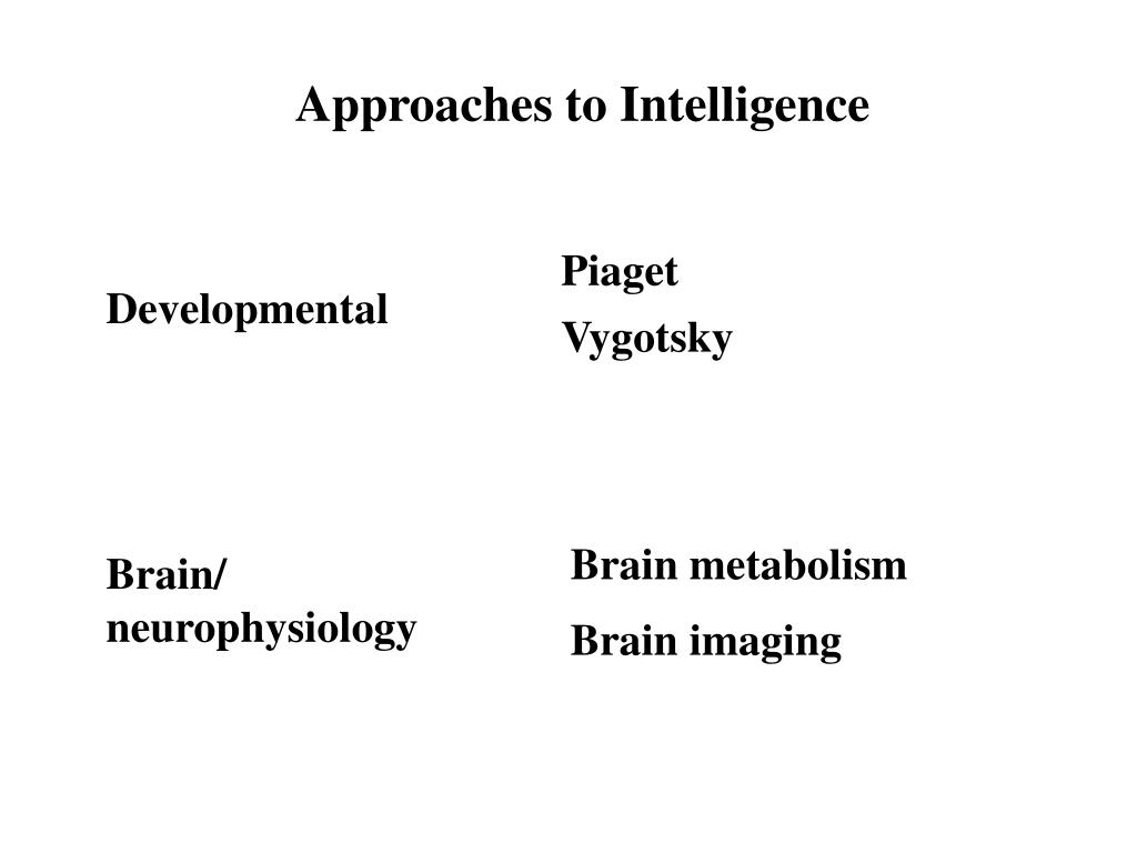 Approaches to Intelligence