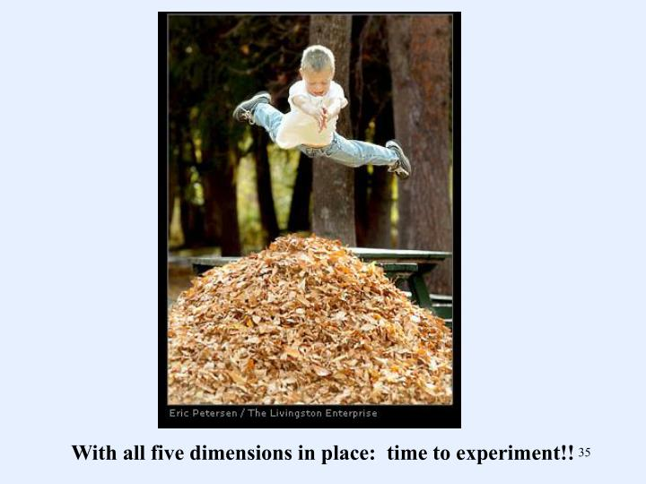 With all five dimensions in place:  time to experiment!!