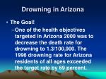 drowning in arizona31