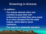 drowning in arizona50