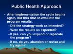 public health approach22