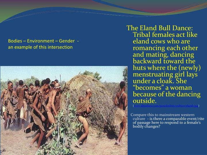Bodies – Environment – Gender  - an example of this intersection