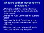 what are auditor independence provisions
