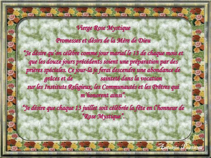 Vierge Rose Mystique