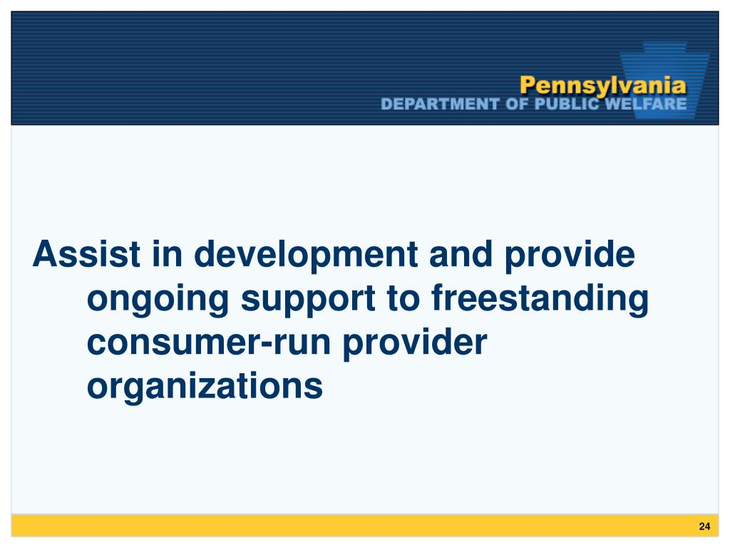 Assist in development and provide ongoing support to freestanding consumer-run provider organizations