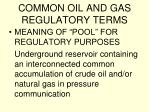 common oil and gas regulatory terms