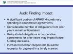 audit finding impact