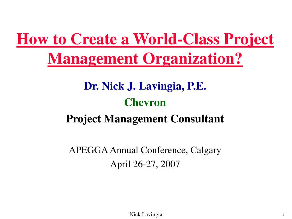 how to create a world class project management organization l.