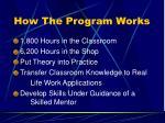 how the program works10