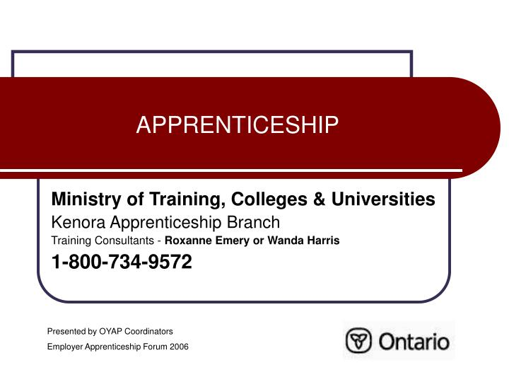 apprenticeship n.